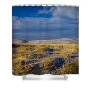 White Sands Golden Grass Shower Curtain