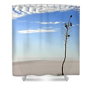 White Sands National Monument 1 Shower Curtain