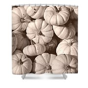 White Squash Shower Curtain