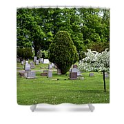 White Tree In Cemetery Shower Curtain