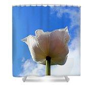 White Tulip Shower Curtain