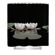 White Water-lily 6 Shower Curtain