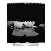 White Water-lily 7 Shower Curtain
