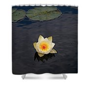 White Water-lily Shower Curtain