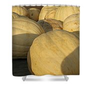 White Yellow Pumpkins Shower Curtain