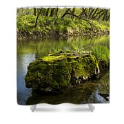 Whitewater River Spring 12 Shower Curtain