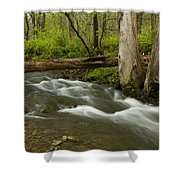 Whitewater River Spring 18 Shower Curtain