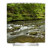 Whitewater River Spring 8 A Shower Curtain