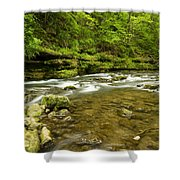 Whitewater River Spring 8 C Shower Curtain