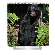 Whose Coming To Visit? Shower Curtain