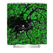 Wicked Widow - Green Shower Curtain
