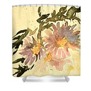 Wild Asters Aged Look Shower Curtain