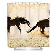 Wild Dust Shower Curtain