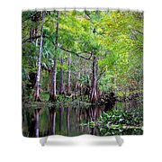 Wild Florida - Hillsborough River Shower Curtain