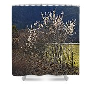Wild Fruit Tree In The Country Shower Curtain