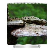 Wild Fungi Shower Curtain