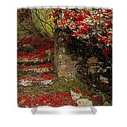 Wild Garden, Rowallane Garden, Co Down Shower Curtain