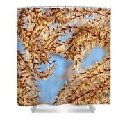 Wild Grasses Against A Blue Sky Shower Curtain