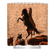 Wild Hooves Shower Curtain