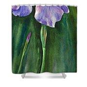 Wild Iris I Shower Curtain