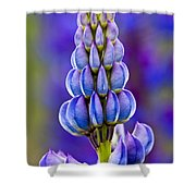 Wild Lupins Shower Curtain
