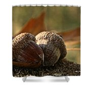 Wild Nuts Shower Curtain