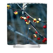 Wild Red Berries Out Of The Shell Shower Curtain