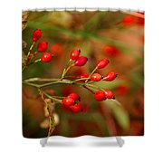 Wild Red Berry Reflections Shower Curtain