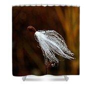Wild Seed Shower Curtain