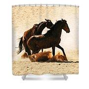 Wild Stallion Clash 3 Shower Curtain