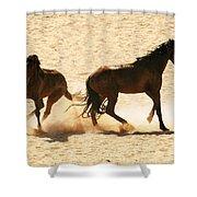 Wild Stallion Clash Shower Curtain