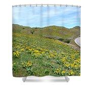 Wild Sunflowers 2 Shower Curtain