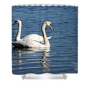 Wild Swans Shower Curtain by Sabrina L Ryan