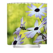 Wild Things Shower Curtain
