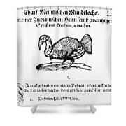 Wild Turkey, 1604 Shower Curtain