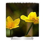 Wild Yellows Shower Curtain
