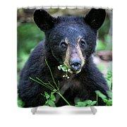 Wildflower Bear Shower Curtain