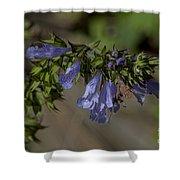 Wildflower Beauty Shower Curtain