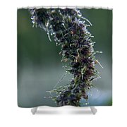 Wildflower Dew Covered Shower Curtain