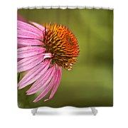 Wildflower Dew Drops Shower Curtain