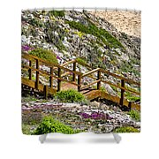 Wildflower Steps Shower Curtain