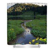 Wildflower Stream Shower Curtain