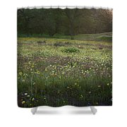 Wildflower Sunburst One Shower Curtain
