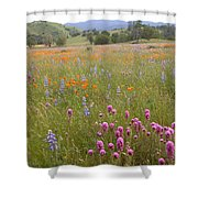 Wildflower Wonderland 6 Shower Curtain