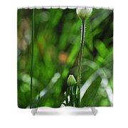Wildflower1 Shower Curtain
