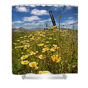 Wildflowers And Barbed Wire Shower Curtain