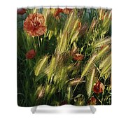 Wildflowers And Grass Tufts In Provence Shower Curtain