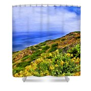 Wildflowers At Point Loma Shower Curtain