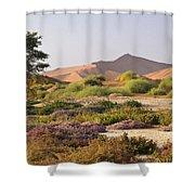 Wildflowers At Sossusvlei Shower Curtain