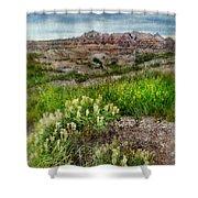 Wildflowers In Badlands Shower Curtain